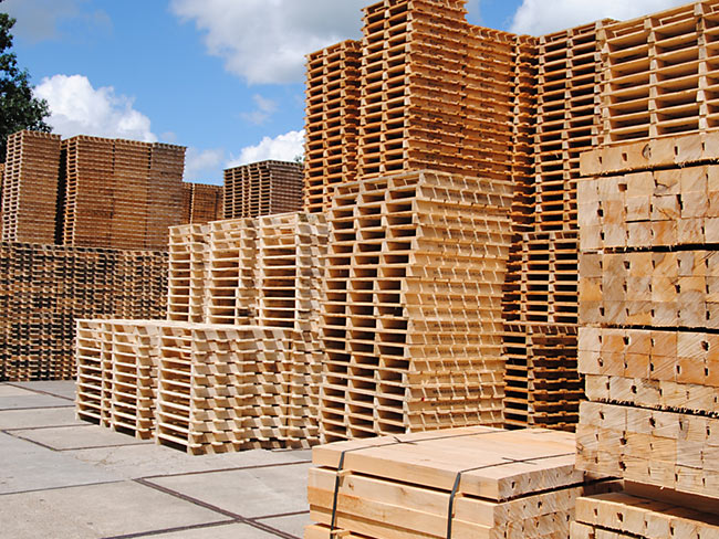 Lapack Handel & Recycling Europaletten CP paletten